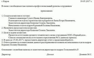 Приказ о создании комиссии учреждения по списанию основных средств — образец