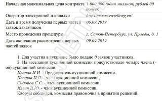 Протокол рассмотрения единственной заявки на участие в электронном аукционе по закону n 223-фз — образец