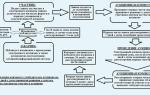 Представление участником электронного аукциона оператору электронной площадки документов, подтверждающих полномочия руководителя по 44 фз