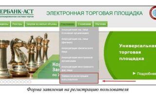 Госзакупки для чайников — как зарегистрироваться на сайте zakupki.gov.ru?