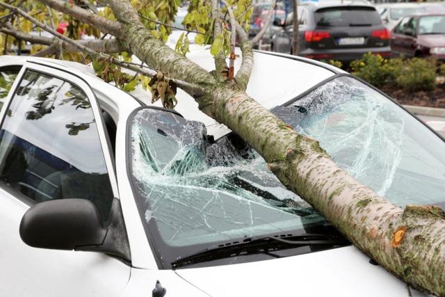 Как возместить ущерб от падения снега на автомобиль организации с крыши многоквартирного дома