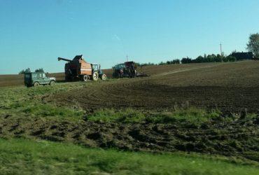 Сельскохозяйственные земли: целевое назначение и варианты использования