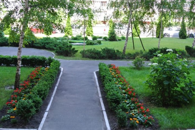 Озеленение и благоустройство территории многоэтажного жилого дома